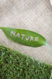 Wording on leaf Stock Images
