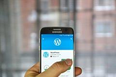 Wordpress mobile application Royalty Free Stock Photography