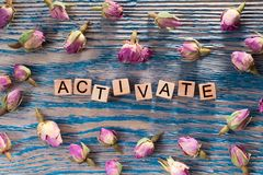Activate on wooden cube. The words activate write on wooden cubes with rose bud on blue color wood background royalty free stock photos