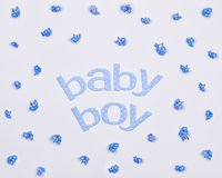 Words baby boy around blue forget-me-not flowers Stock Photography