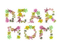 Words flowers dear mom Stock Photo