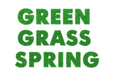 Words green, grass, spring Royalty Free Stock Photos