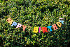 Words Happy Birthday placed on the tree Stock Photos