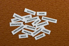 Words about job hunting. Words on paper scraps about jobs and job hunting Stock Photo