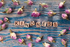 Kindness on wooden cube. The words kindness write on wooden cubes with rose bud on blue color wood background stock image