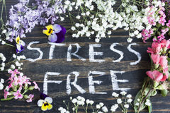 Words Stress Free with Spring Flowers Royalty Free Stock Image