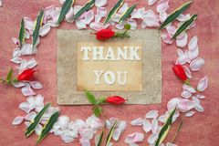 The words THANK YOU Stock Photos