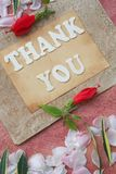 The words THANK YOU Stock Images