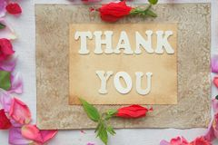The words THANK YOU Royalty Free Stock Images