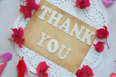 The words THANK YOU Stock Image