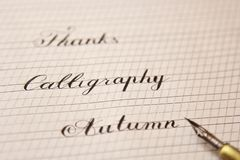 Words are written with a wooden ink pen on a white paper sheet with stripes drawn. stationery close up top view. spelling lessons royalty free stock images
