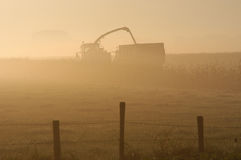 At work. In morning fog Royalty Free Stock Images