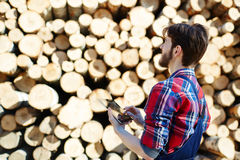 Work of arborist. Forester with touchpad looking at stack of logs Stock Photo
