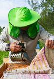 Work of beekeeper. Stock Photo