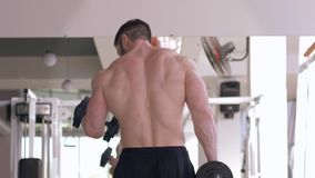 Work on body, muscular strong man flexing arms with dumbbells in hands during power training in front of mirror at sport stock video footage
