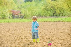 Work at farm. Mother nature concept. Planting seedlings. Child having fun with little shovel and plant in pot. Planting royalty free stock photography