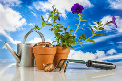 Work in garden, saturated colors Royalty Free Stock Photo