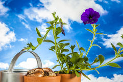 Work in garden, saturated colors Stock Photo