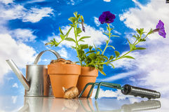 Work in garden, saturated colors Stock Photos
