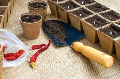 Work in garden stock images