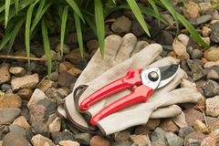 Work gloves and hand pruner Royalty Free Stock Image