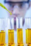 Work at laboratory Royalty Free Stock Photography