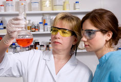 Work in the laboratory Stock Photo