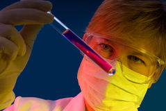 Work in the laboratory Royalty Free Stock Photo
