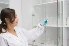 Work in laboratory Royalty Free Stock Image