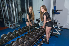 Work out with dumbbells. Young girl work out with dumbbells Royalty Free Stock Images