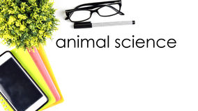 WORK PLACE ON TOP VIEW WITH WORD `ANIMAL SCIENCE` Stock Photos