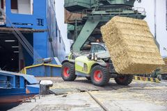 Work on port. Telescopic handler loading bales in a ship. Day view. Work in port stock images
