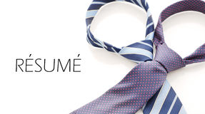 Work Resume Concept. With Two Business Tie's stock images