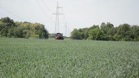 Work spraying crop stock video