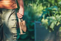 Work on the vegetable garden. Gardener holding hand trowel and small hoe Royalty Free Stock Photos