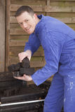 Worker. Man in workwear stacking coal briquet for burning stove (chimney Royalty Free Stock Images