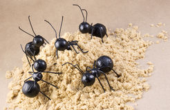 Worker Ants on Ant Hill Concept Royalty Free Stock Photography