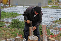Worker with an axe Stock Image