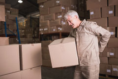Worker with backache while lifting box in warehouse. Side view of worker with backache while lifting box in the warehouse Royalty Free Stock Photo