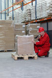Worker with bar code reader working in warehouse stock photography