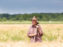 Worker in barley field Stock Images