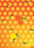 Worker bees Stock Images