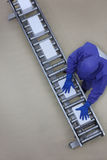 Worker in blue uniform working with boxes on packing line Stock Photos