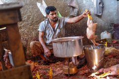 Worker boiling chicken. MUMBAI, INDIA - 11 JANUARY 2015: Worker cleaning dead chicken on Andheri market Royalty Free Stock Photos