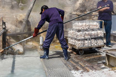 Worker is boiling eggs in mineral water at Owakudani valley Royalty Free Stock Photography