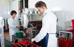 Worker bottling sparkling wine with machine. At wine factory Royalty Free Stock Photo