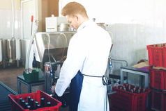 Worker bottling sparkling wine with machine. Young man worker bottling sparkling wine with machine at wine factory Stock Image