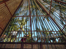 Worker build a bamboo roof in Bali in traditional way stock images