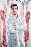 Worker in butchery standing in front of carcasses Stock Image