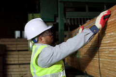 Worker carpenter measures the wood. With measuring tape Royalty Free Stock Images